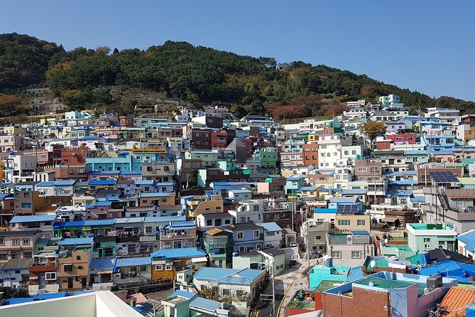Private tour, 1Day Busan city tour by KTX from Seoul