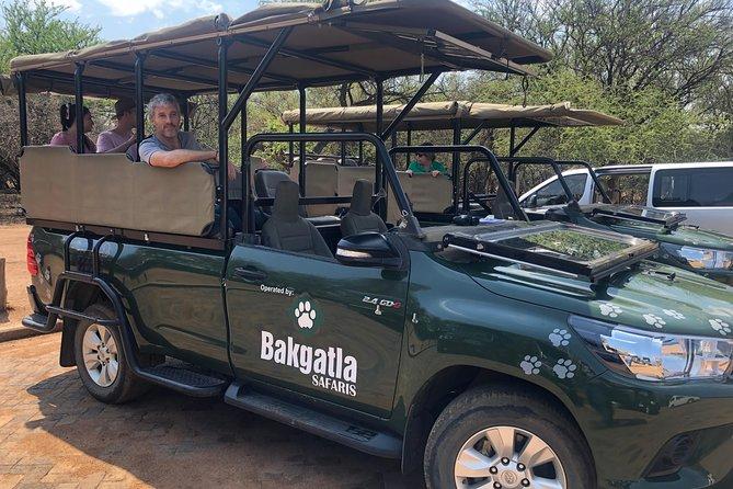 Pilanesberg Safari in Open Vehicle