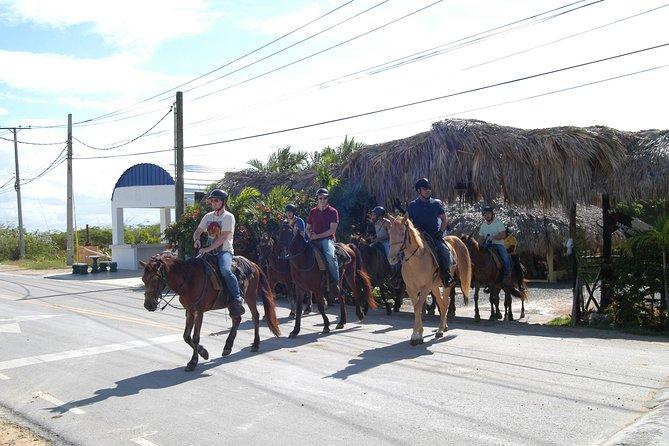 Belle équitation Punta Cana