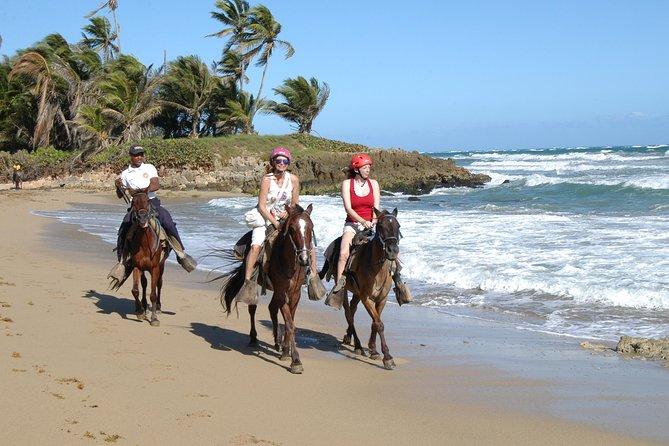 Stunning Horseback Riding In Punta Cana