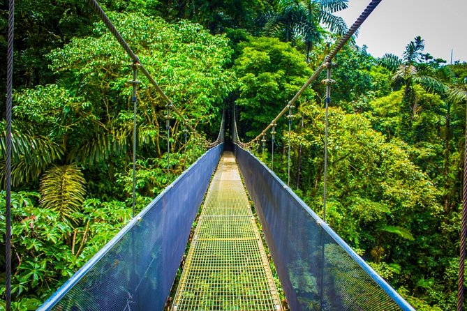 Arenal Hanging Bridges and La Fortuna Waterfall Nature Hike