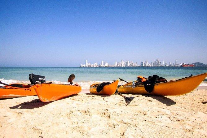 Punta Arena Excursion Kayak
