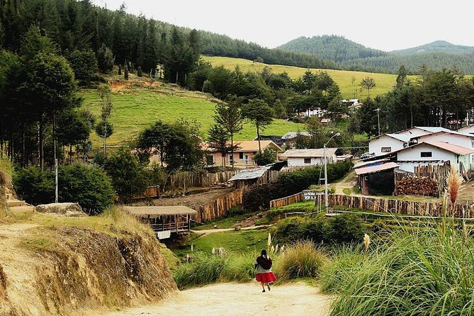 Half Day Farming Experience in Porcon from Cajamarca