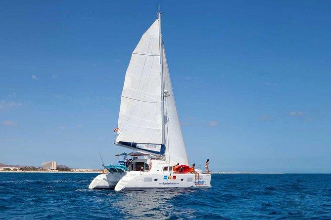 Excursion de 3heures sur l'île de Lobos au départ de Fuerteventura sur un catamaran