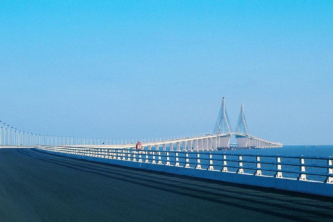 Shanghai Donghai Bridge and Yangshan Port Private Tour with Seafood Feast photo 3