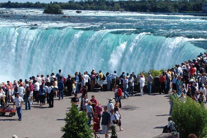 Cascate del Niagara, Niagara-on-the-Lake, Tour delle cantine da Toronto
