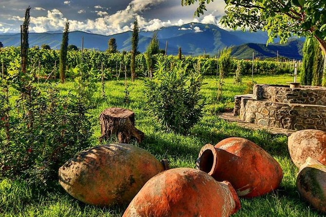 Kakheti-Wine Region Full-Day Superior Private Guided Tour & Organic Wine Tasting