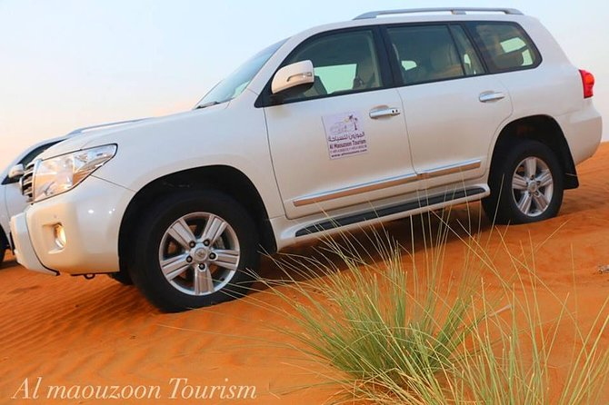 Dubai Morning Safari: Red Dunes, Sand boarding, Camel Ride photo 2