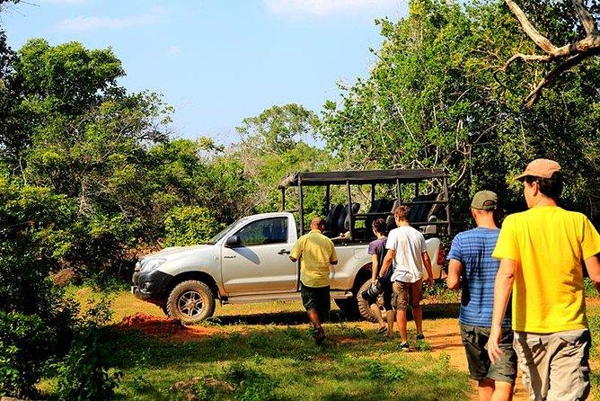Private Tour: Yala National Park Safari