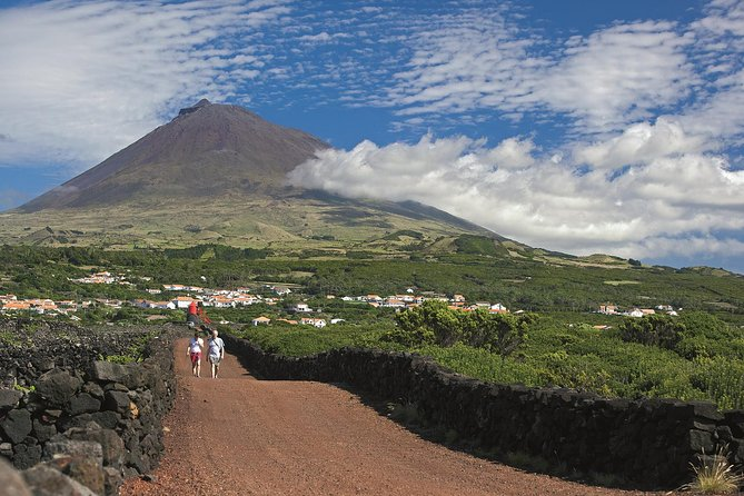 Full-Day Pico Island Tour from Horta