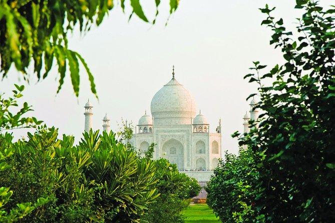 Visit Mehtab Bagh and Avoid Hefty entry fee for Taj Mahal