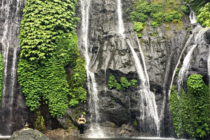 Private Trip to Paradise in Bali Bayumala Waterfall and Jatiluwih rice Terrace