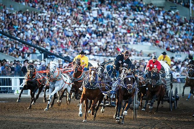 The Calgary Stampede Calgary Canada Lonely Planet