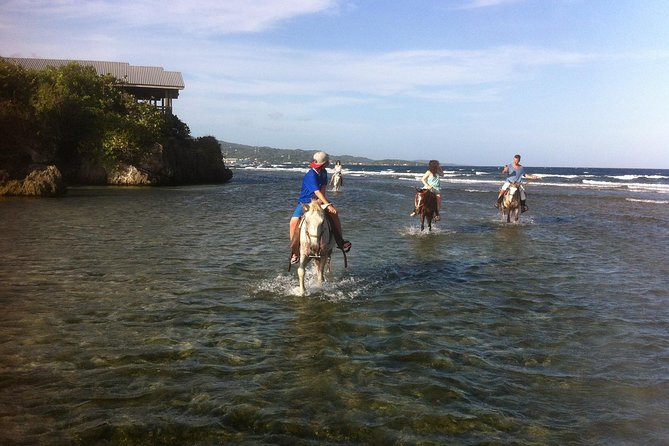 Roatan Excursion: Horseback Ride / Plus Sloth Park and Glass Bottom Boat
