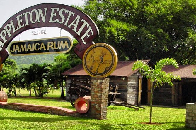 Private Appleton Estate Rum Tour & Tasting from Runaway Bay