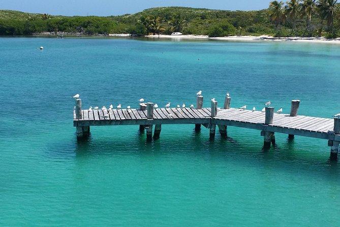 Excursão à Isla Contoy e à Isla Mujeres com Mergulho com Snorkel saindo de Cancun ou Playa del Carmen