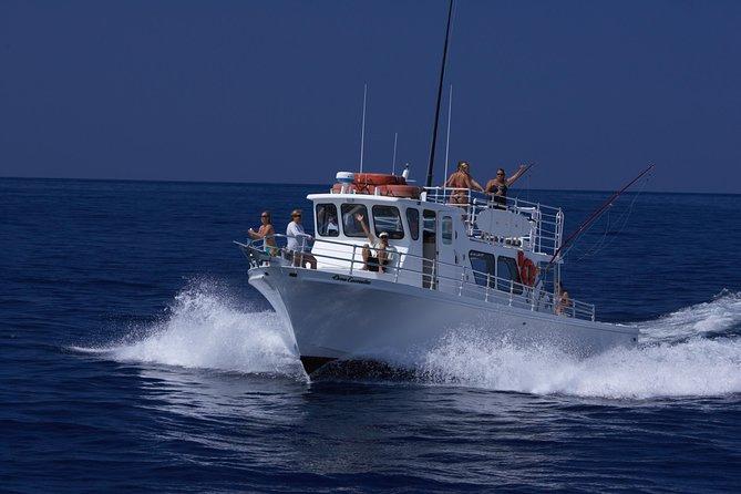 big-island-snorkeling-nocturne-avec-les-raies-mantas