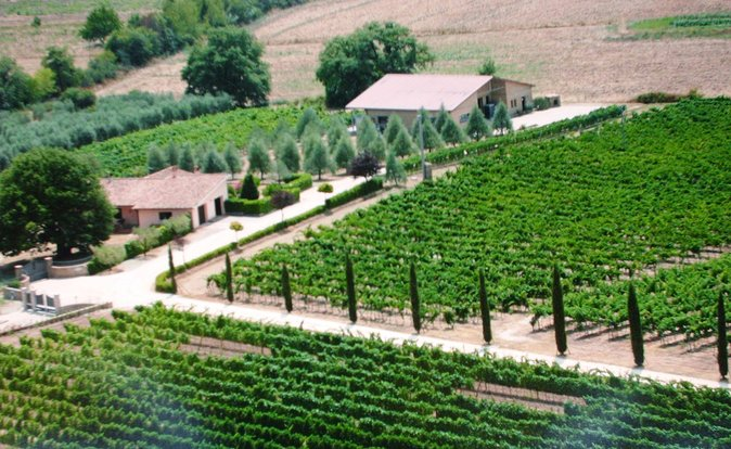 Villa Corano Winery Tour in Tuscany photo 1