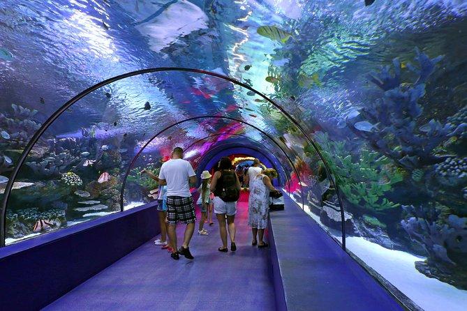 Antalya Aquarium-inträde med valfri Antalya City Tour och Duden Waterfall