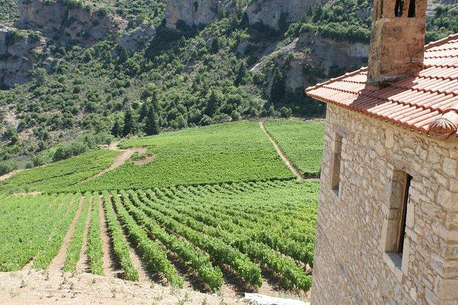 Aigialia Private Wine Tour with Lunch