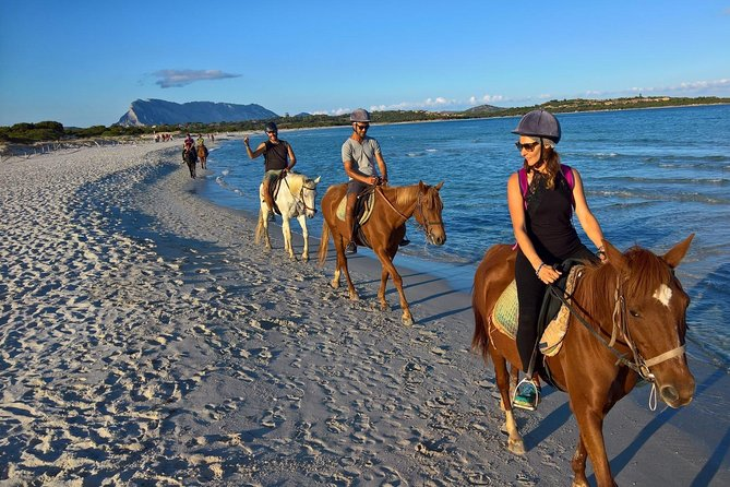 Cagliari: Horseback Riding Tour from Chia