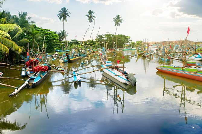 Explore Negombo - Muthurajawela (All-Inclusive Private Day Trip From Colombo)