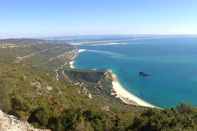 Viagem diurna para grupos pequenos com degustação de vinhos por Arrábida e Sesimbra, partindo de Lisboa