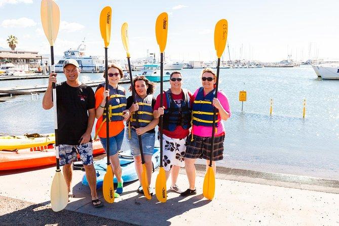 Santa Barbara Harbor Kayak Tour