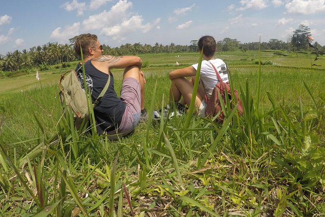 Rice Field Trekking
