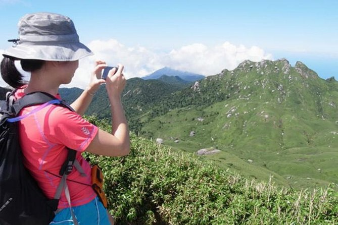 Mt. Miyanoura Hiking Tour in Yakushima Island with Licensed Local Guide photo 1