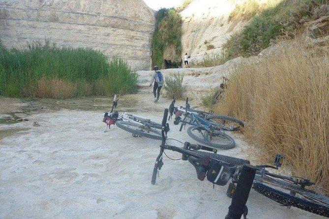 Sde Boker Negev Bike Tour