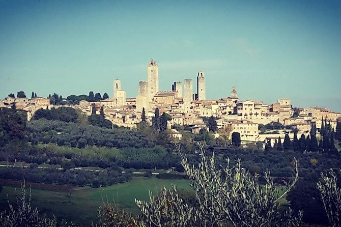 SAN GIMIGNANO and SIENA plus Lunch and Wine tasting TOURS FULL DAY photo 3