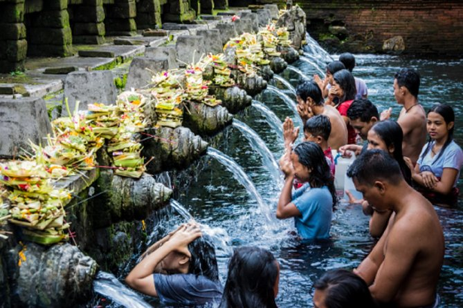 All Ubud Spot Private Tour - Free WiFi