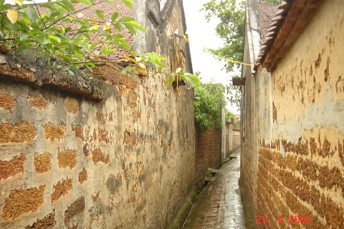 Private Duong Lam ancient village photo 1