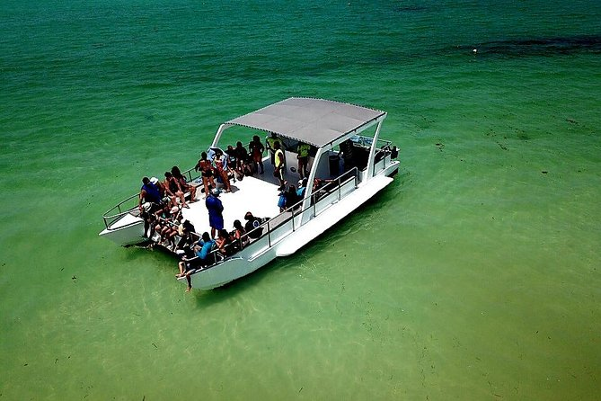 Private Party Cruise Punta Cana
