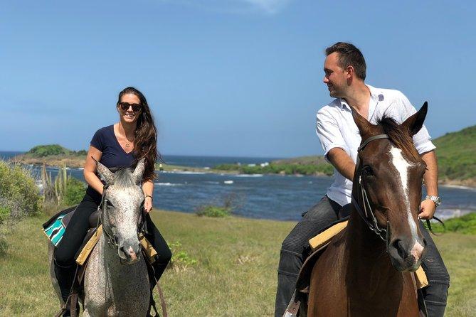 Private Caribbean Beach Picnic Horseback Ride and Swim Experience in St Lucia