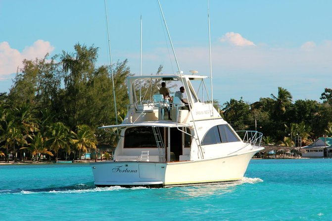Punta Cana Private Yacht Charter photo 1
