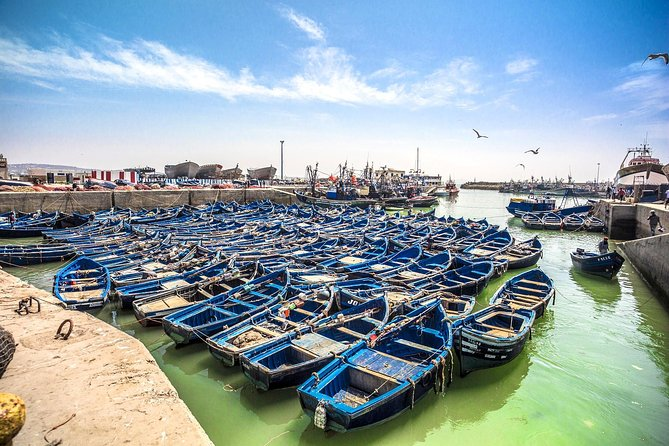 Essaouira Day trip from Agadir photo 1