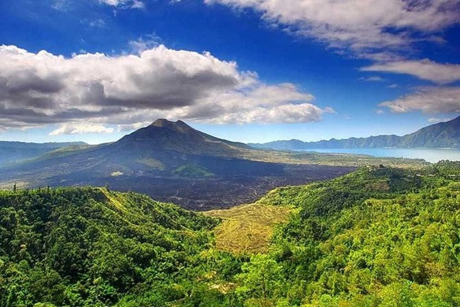 Private Tour - Ubud Kintamani Tours