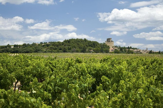 Full private day Avignon Chateuneuf du pape les baux de provence