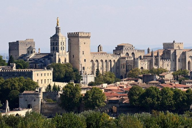 Full private day Avignon Chateuneuf du pape wine tasting
