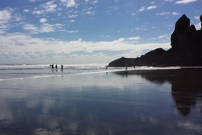 Private Tour of Piha and KiteKite Falls from Auckland