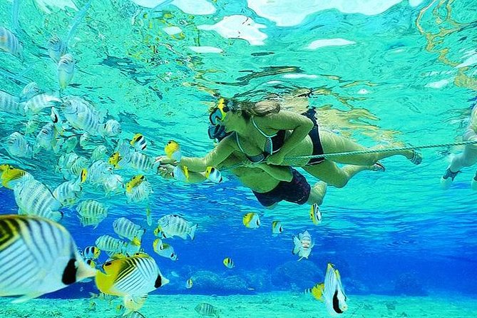 Hurghada: Full-Day Scuba Diving Adventure Tour with Lunch
