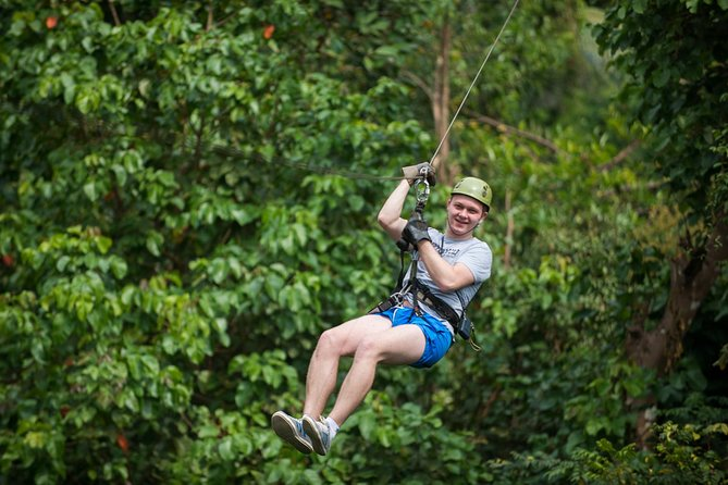 Embrace adventure as you fly over the treetops!