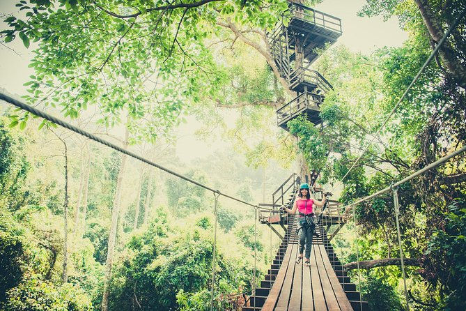 Rainforest Canopy Tour in Pattaya photo 3