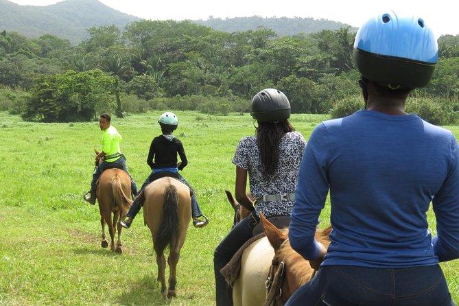 Belizean Cowboy Adventure