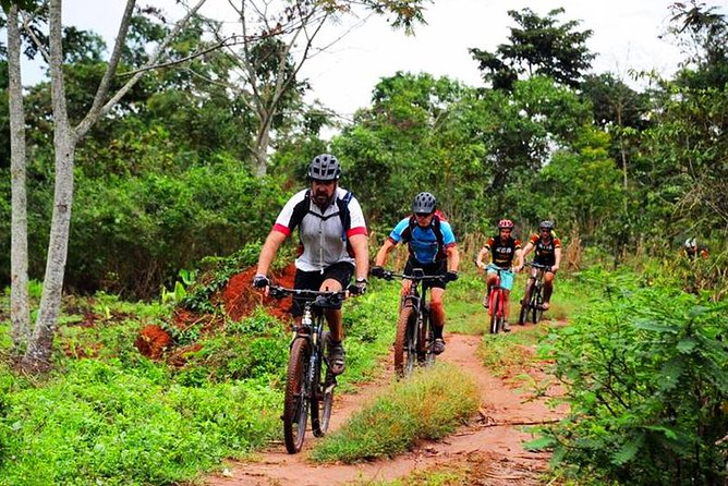Lake Victoria Island Cycling Tour from Kampala