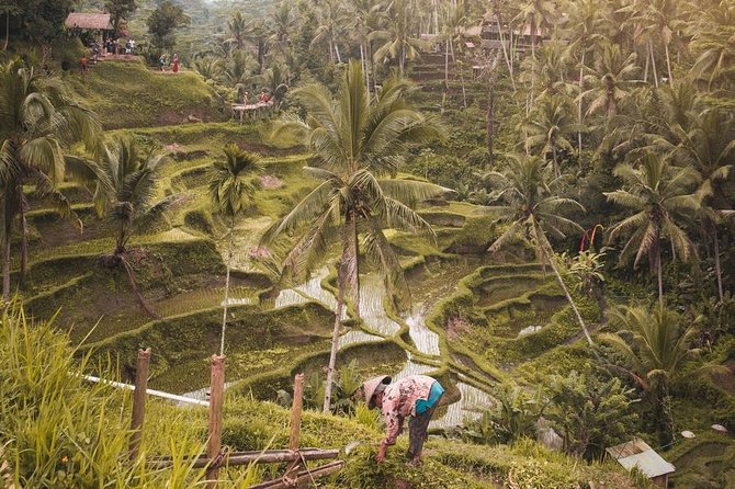 All of Ubud and Gates to Heaven (2 Day Tour)