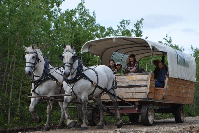 Utkast till hästritad täckt vagnsturné med restaurang på baksidan