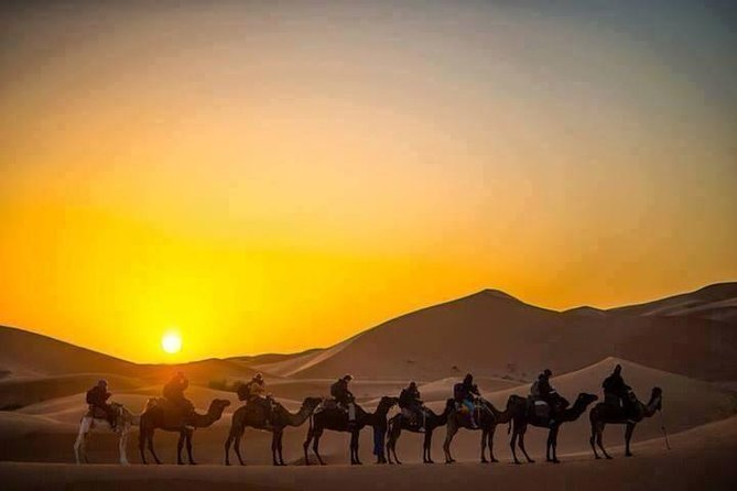 Half-Day City Tour of Jaisalmer Sunset by Camel Ride with Dinner